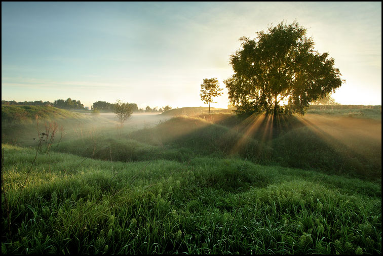 Landscape | beams, fog, dawn, sun, grass