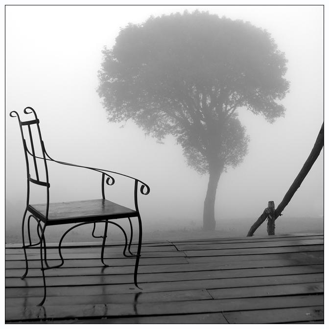 awakening | chair, tree, house, fog, black and white
