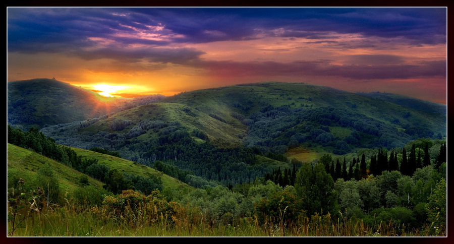 Dawn at the bear track   valley, dawn, panorama, forest, mountains