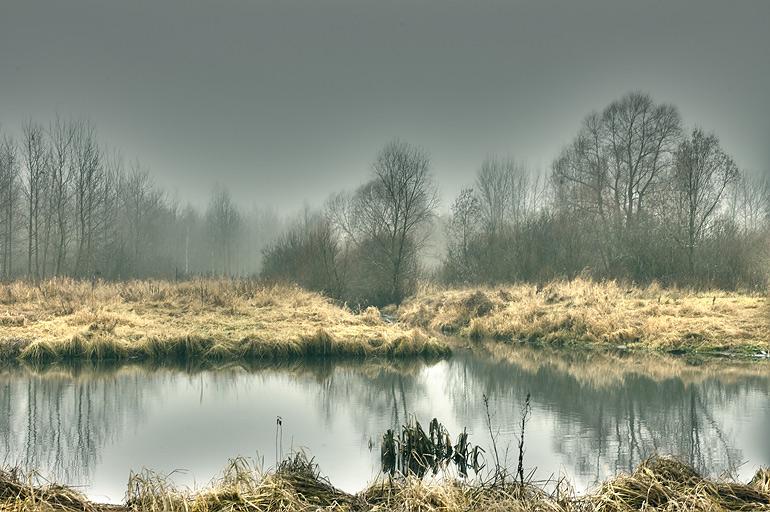 fog | lake, autumn, fog, hdr, reflection