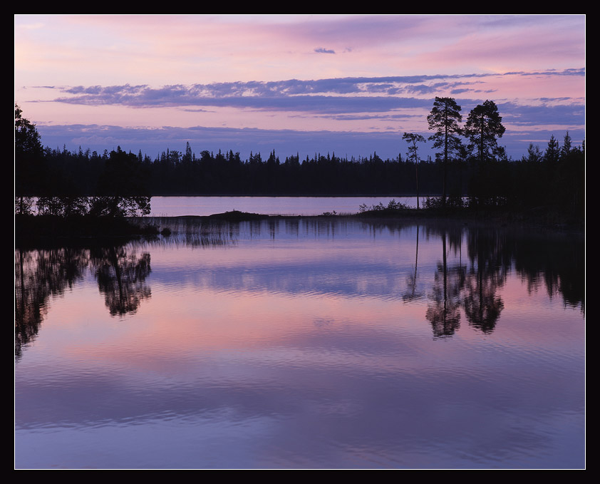 gentle shades of the late evening | sky, forest, lake, reflection, silhouette