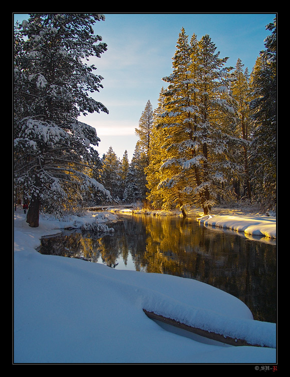 Winter | river, forest, snow, winter, sun