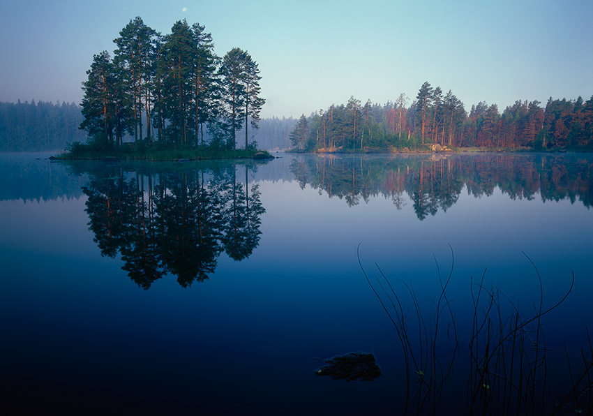 special, karelian | evening, reflection, pine, island, lake