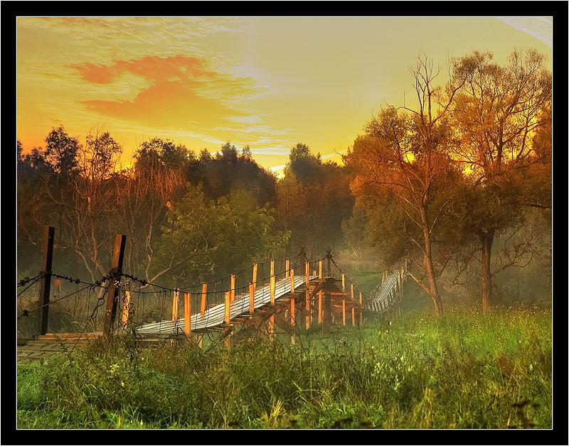 Paramon bridge   sky, dusk, hdr, bridge, forest