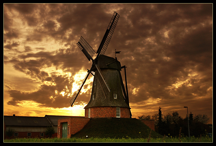 if day comes to end | evening, clouds, flowers, windmill
