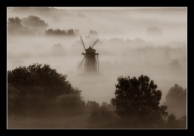 foggy phantom | windmill, sepia, fog, forest