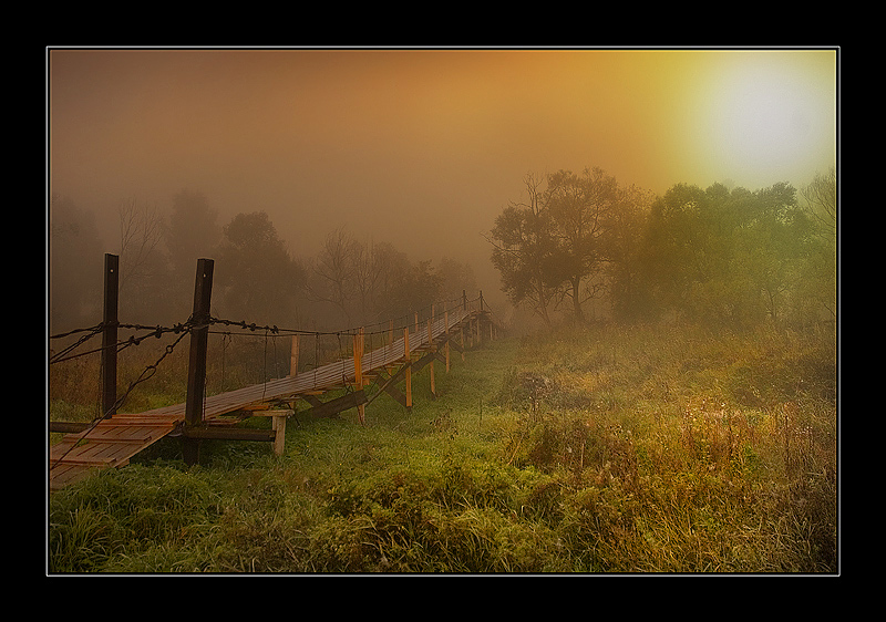 bridge in fairy tale | bridge, sun, fog, forest, grass