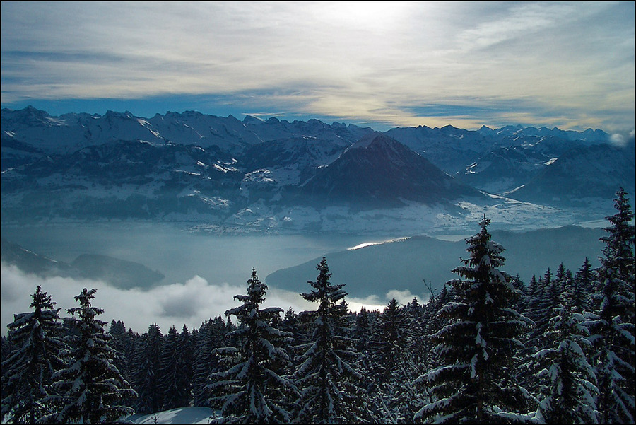 At last! | forest, snow, fog, panorama, mountains