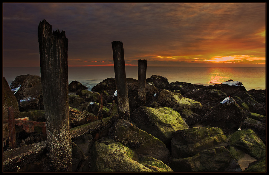 Rocky shore | rocks, wood, sea, dusk, sky