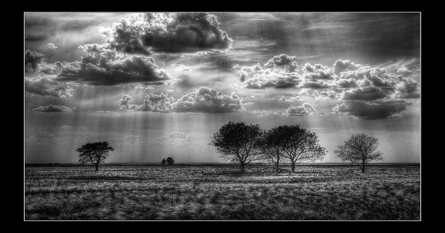Beams | black and white, steppe, beams, clouds