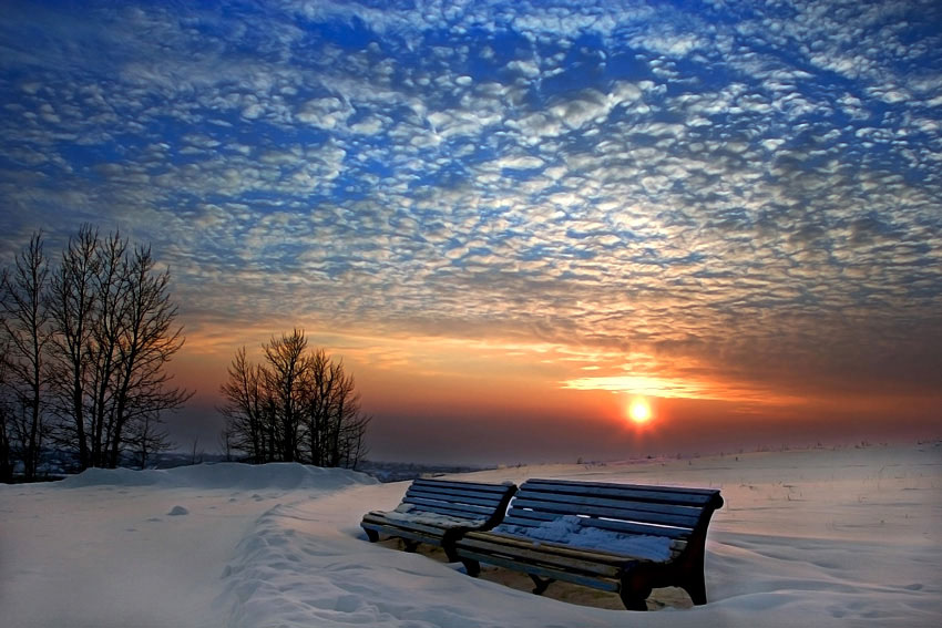 winter evening | winter, bench, dusk, snow, park