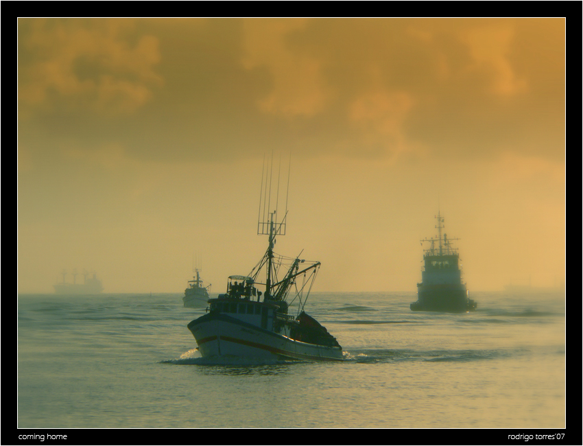 coming home | sea, morning, mist, ship