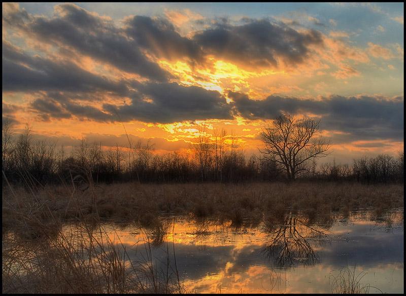 Fire   dusk, lake, reflection, sky, forest