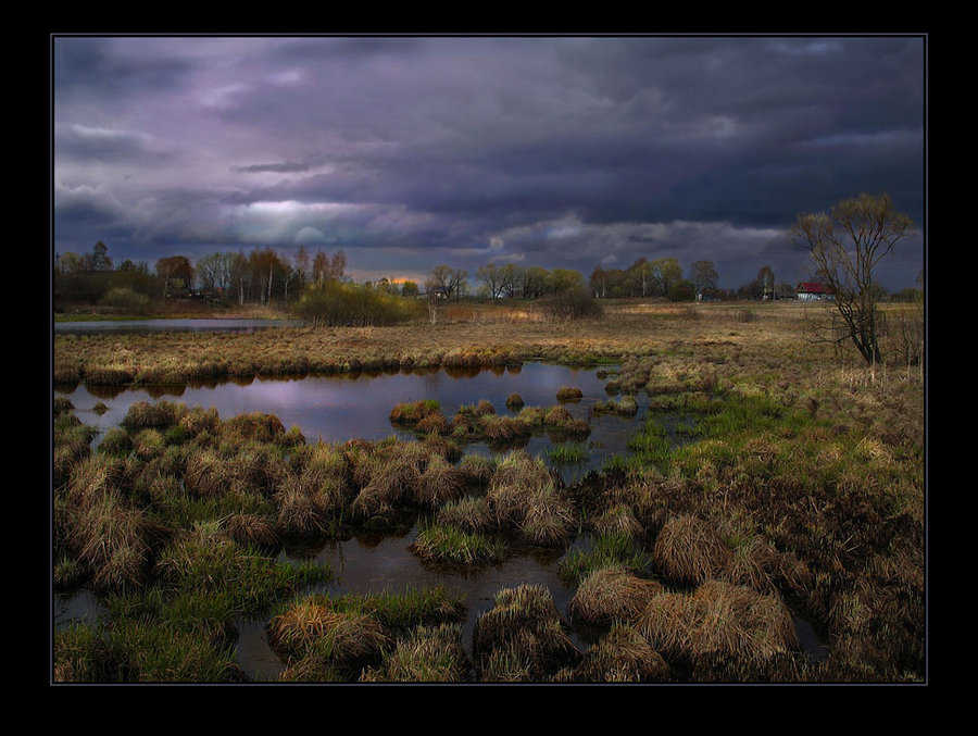 evening on surburb of village. | clouds, evening, swamp, hdr, hummocks