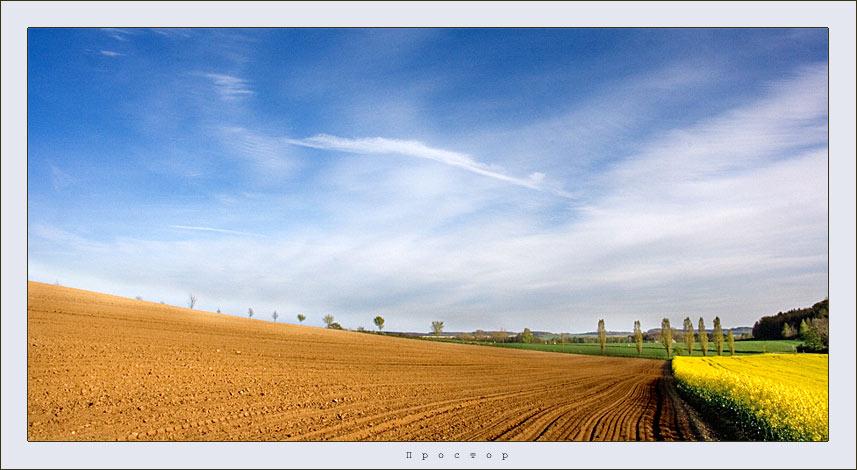 open space | sky, field , plough-land, flowers