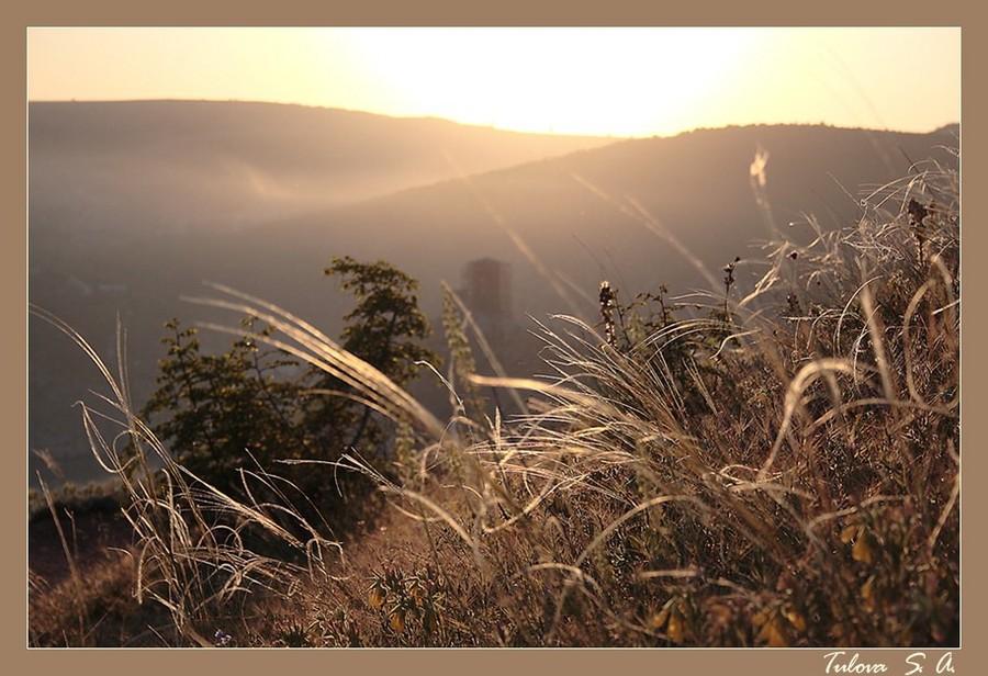 magic crimea   mist, grass, dawn, mountains