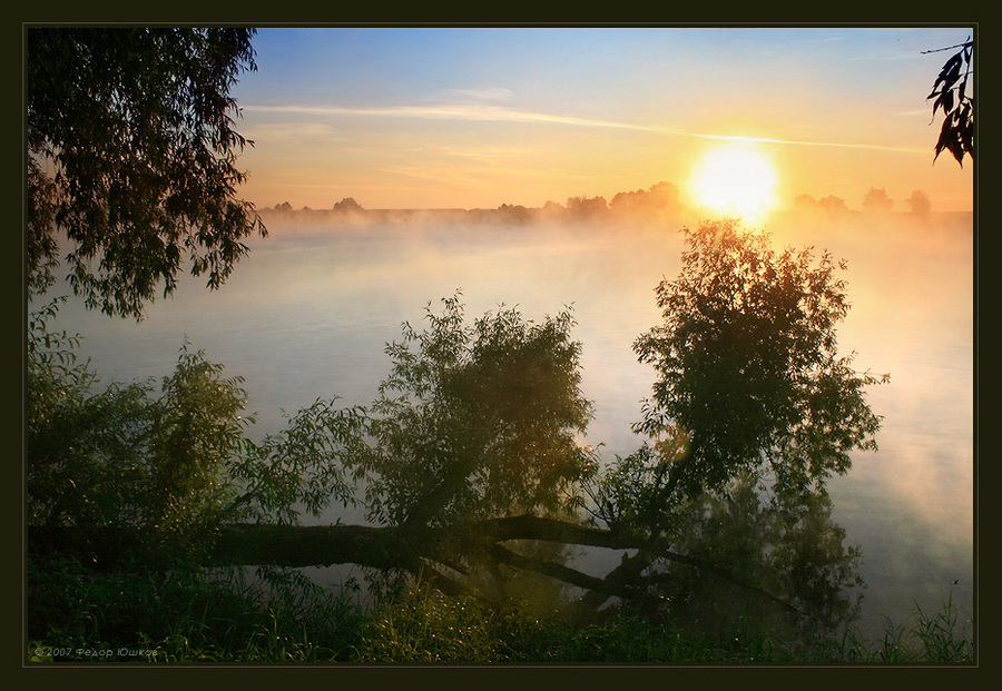 awakening | river, dawn, fog, forest