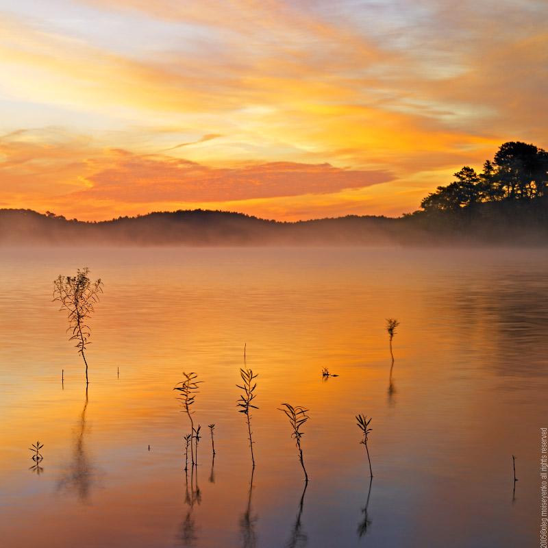 sketch on silk   mist, light, clouds, dawn, lake