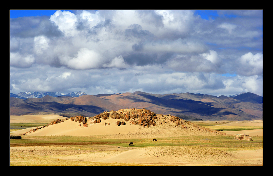 my life in internal tibet | animals, sand, clouds, mountains