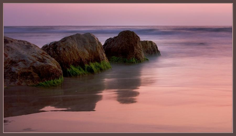 pink dragon 2 | sea, rock, dusk