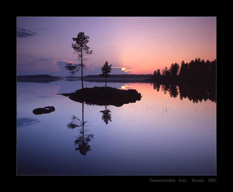 the zen island  | evening, forest, pine, lake, reflection