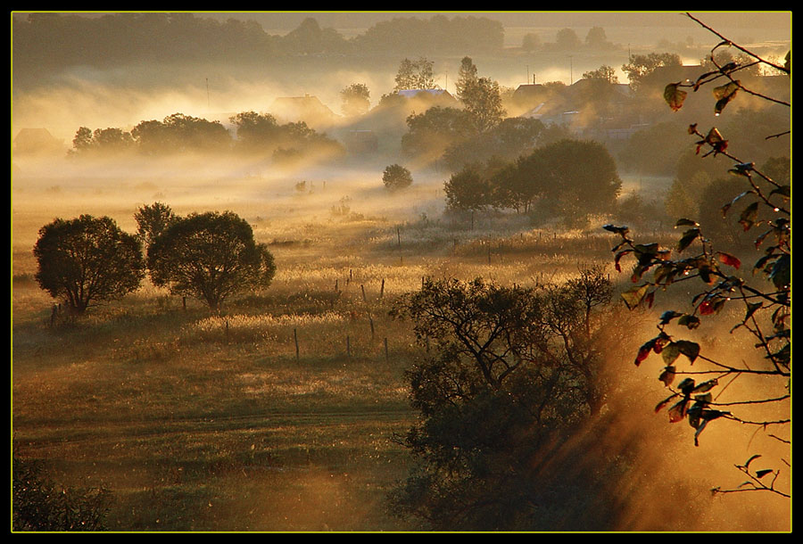 september. morning | light, autumn, village, fog, morning