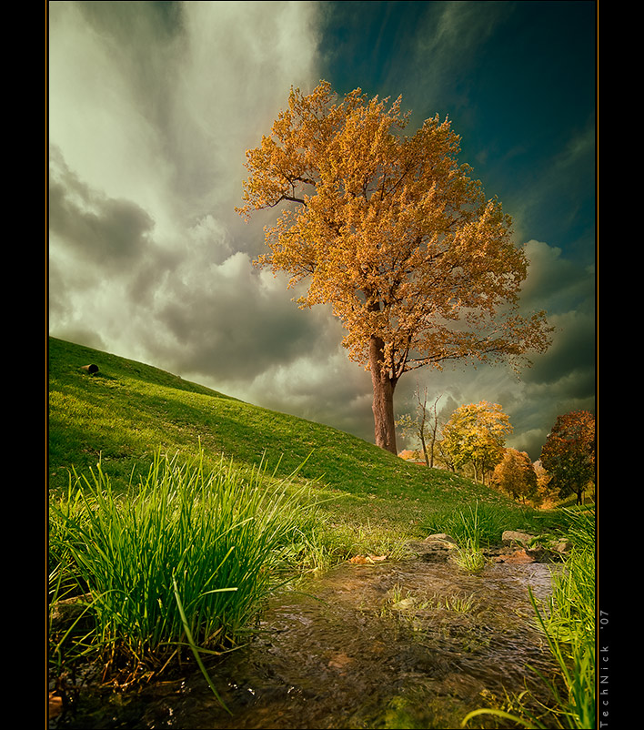 Colors of Autumn (Part.1, Tsaritsyno), continued | gold, park, clouds, stream, autumn, sky