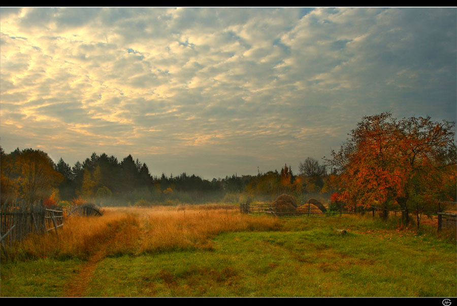 somewhere in between tver and moscow... landscape with apple-tree and haystacks. | clouds, autumn, haystack, hay, field