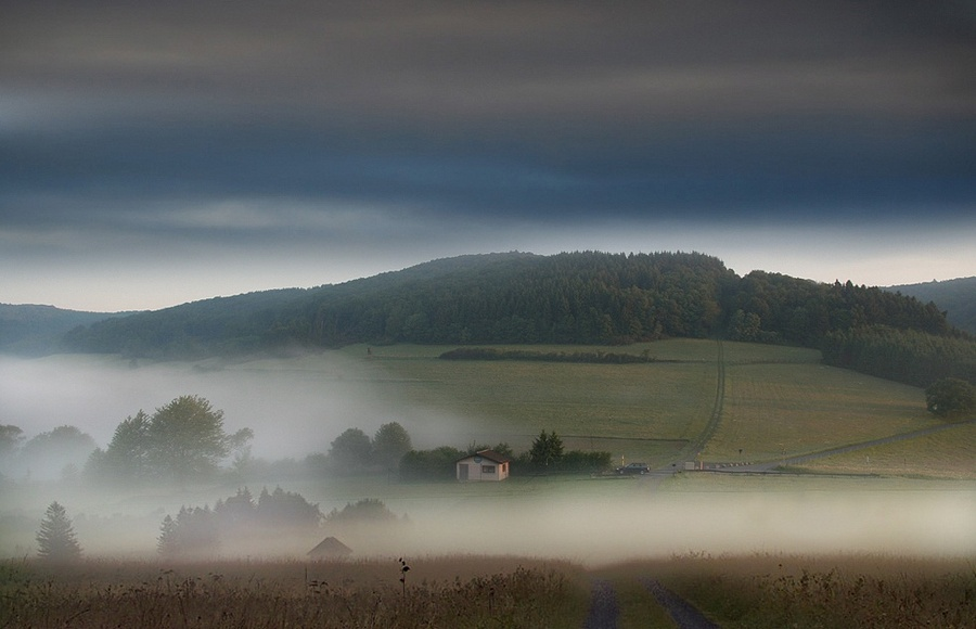 Norway morning   country, morning, trees, fog, fields