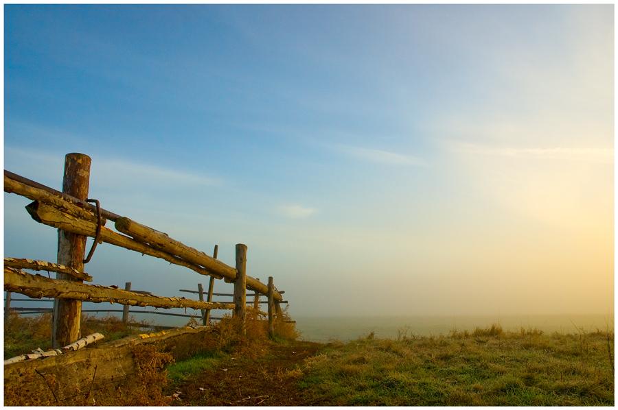 Fragment | fence, light, haze, field, morning
