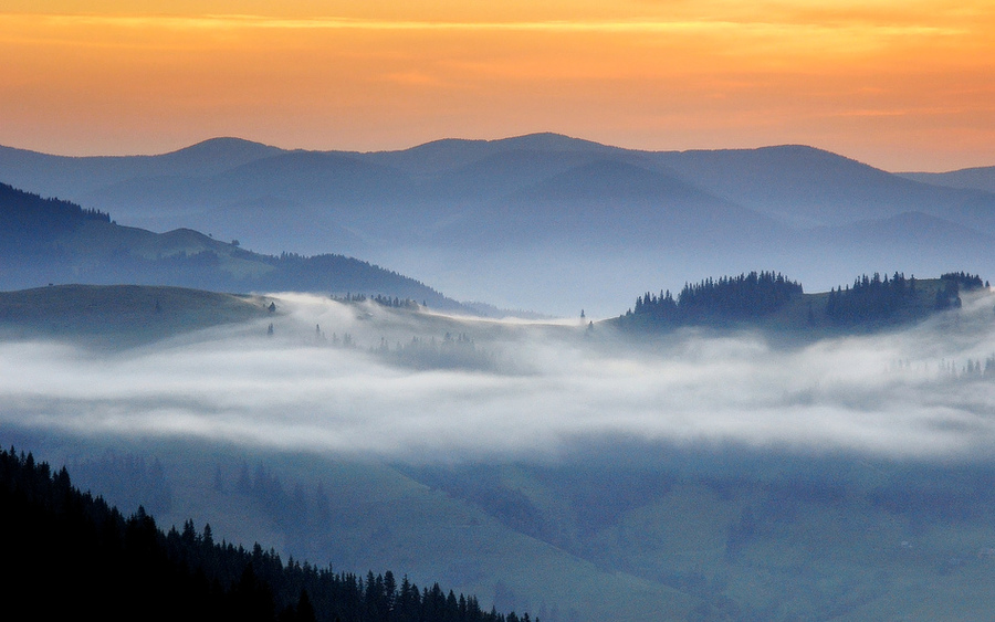Over the Hills | fog, dawn, woods, mountains, Carpathians