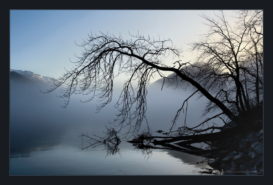 foggy perspective | mountains, silhouette, fjord, tree, fog