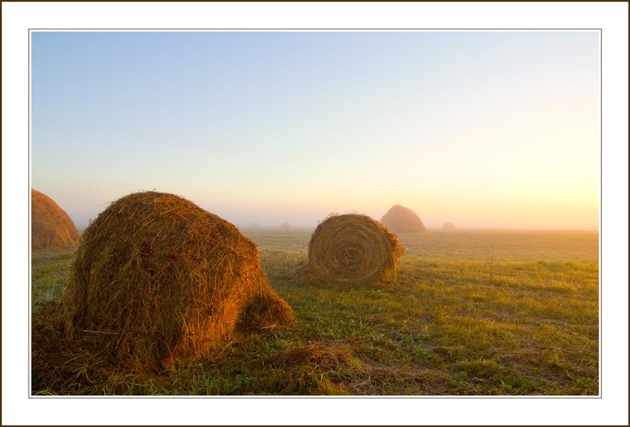 colored fog | fog, haystack, field, dawn
