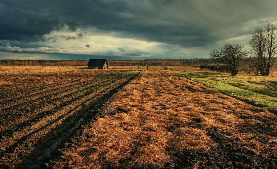 Spring | house, plough-land, clouds, spring, field