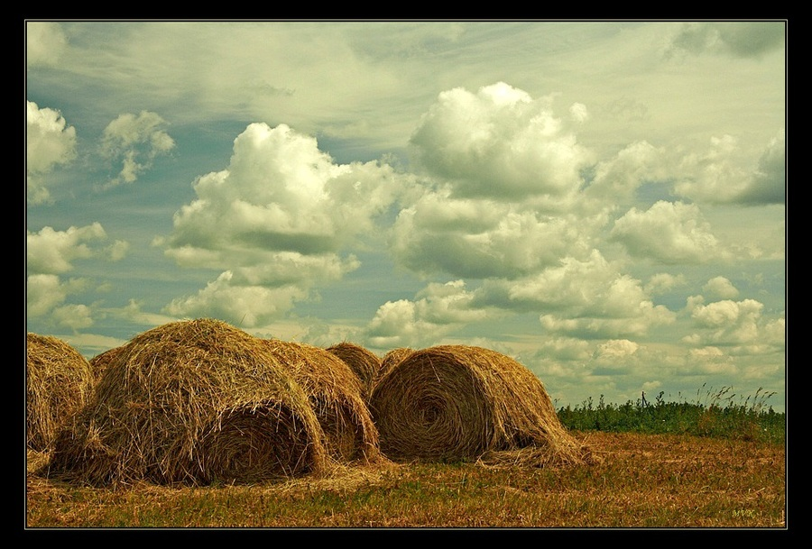 The cool may come | sky, haystack, summer, field, clouds