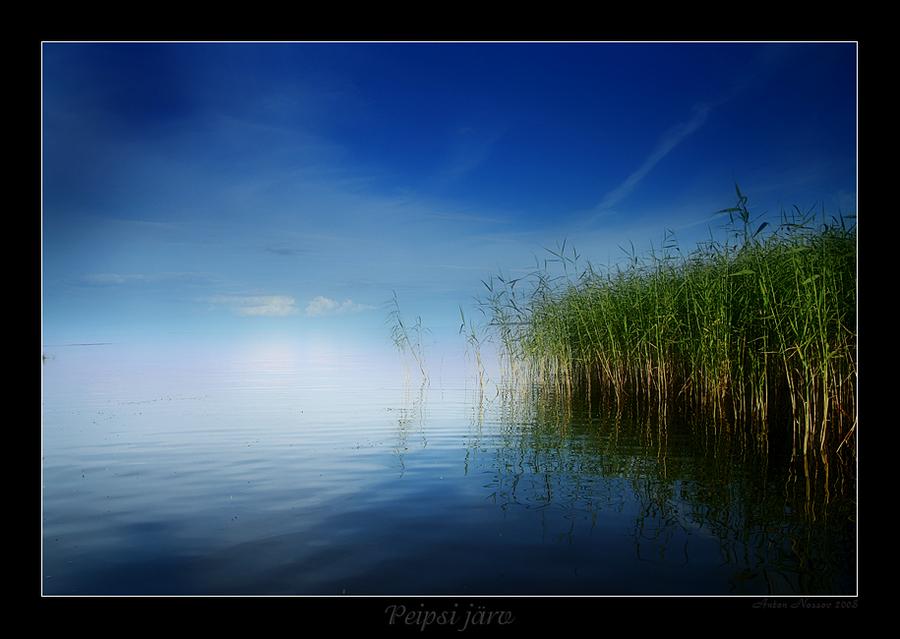 Calm   reflection, rush, light, lake, sky