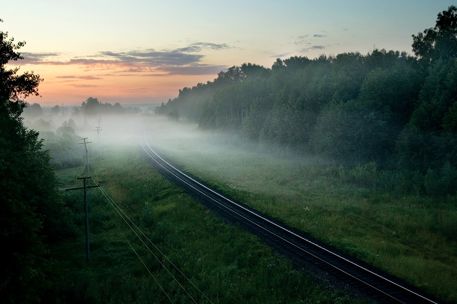 Railway under fog | fog, dawn, trees, summer, railway