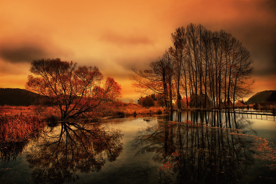 Chairi | water, trees, hdr, autumn