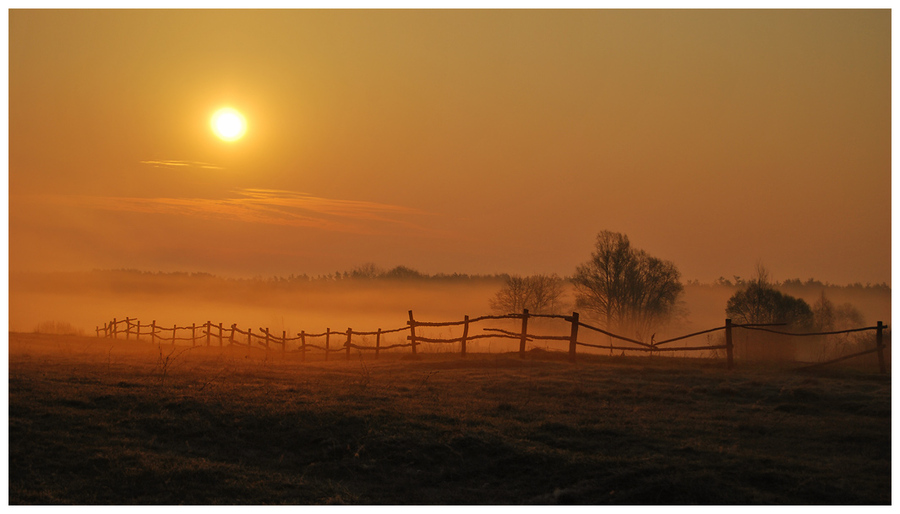 The fog over outskirts | field, morning, mist, sun
