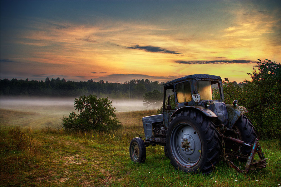 While the job is waiting | трактор, trees, hdr, field, fog