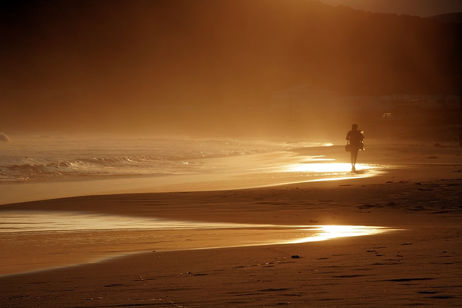 Way to sun | silhouette, sand, waves, mist, beach