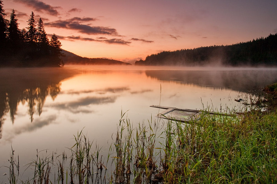 Old wharf | evening, mist, lake, reflection