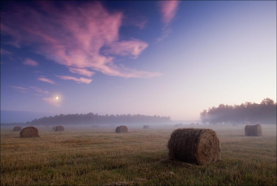 In the fields | haze, dusk, field, haystack