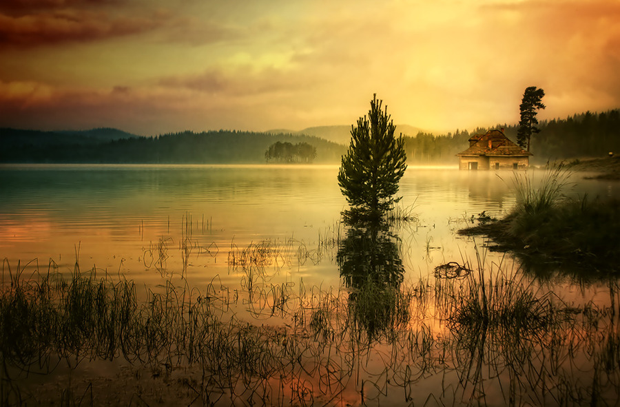 Silence | mist, lake, reflection, sunrise