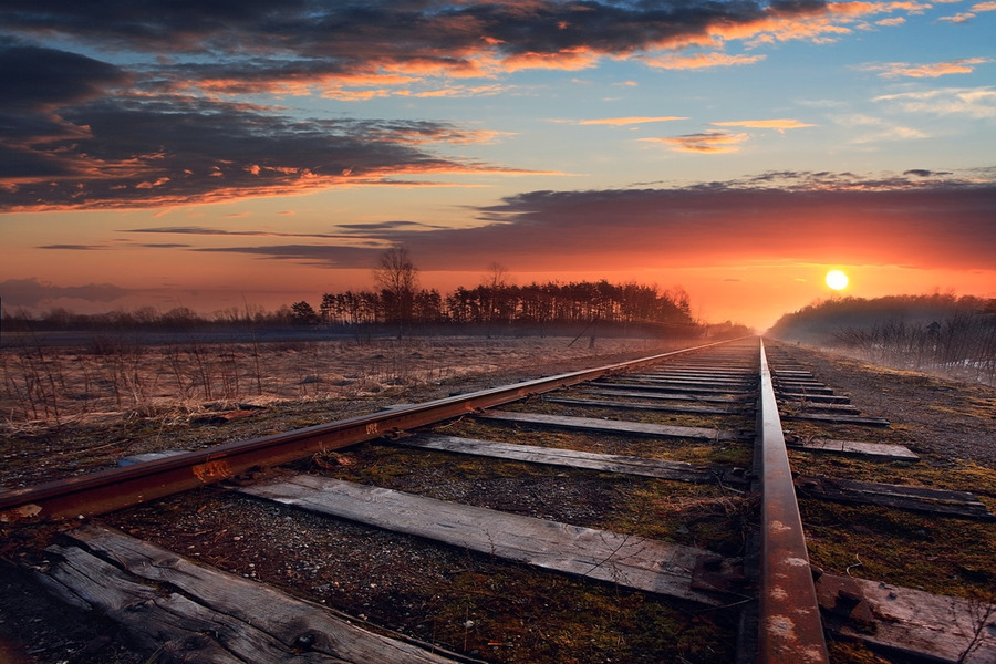 Trains don't come here anymore | road, field, sun
