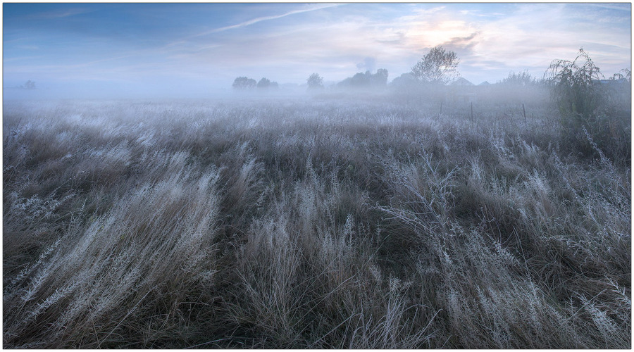With the stream of the grass | field, grass, fog