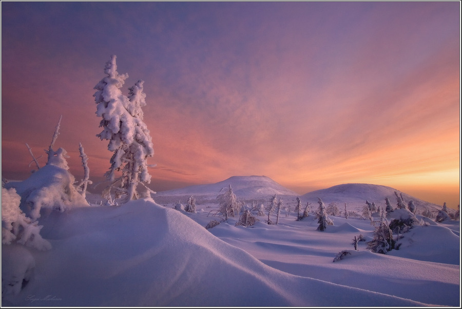 One of the many evenings at Northern Ural | snow, winter, dusk, trees