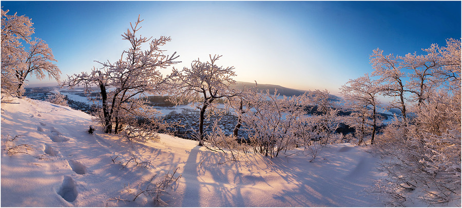 The Bald Mountain | snow, panorama, winter, trees