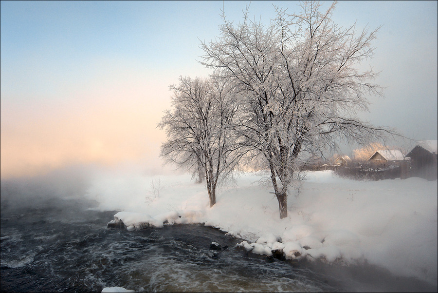 The floating light | village, trees, winter, hoarfrost, river, snow