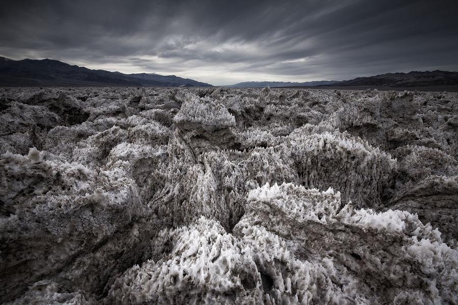 Tiger Woods' dreams | desert, rendering